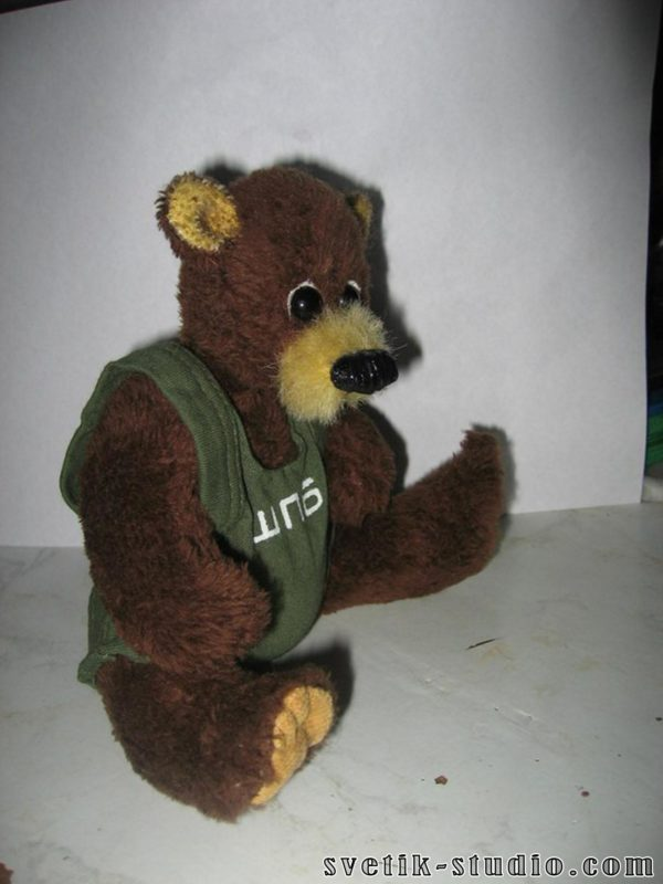 Мишка Паша