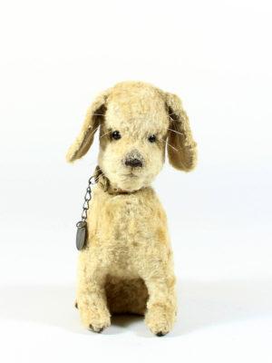 Puppy Pim
