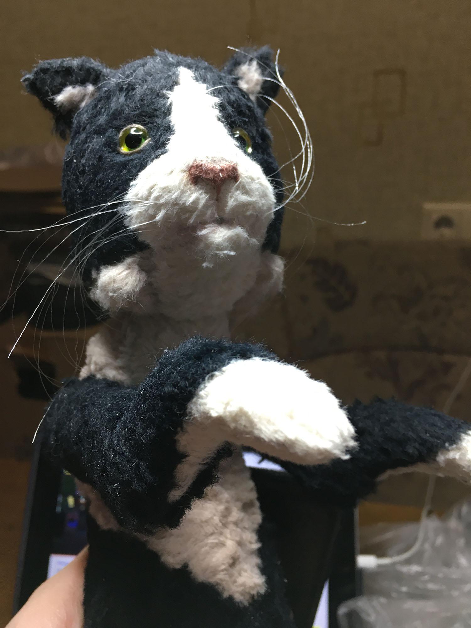 cat_8-2.jpg